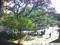 Webcams: UF Turlington Plaza Camera